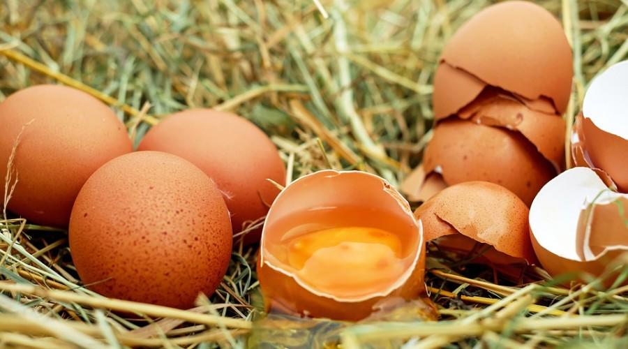 fausses allégations sur l'alimentation Limitez la consommation hebdomadaire d'œufs