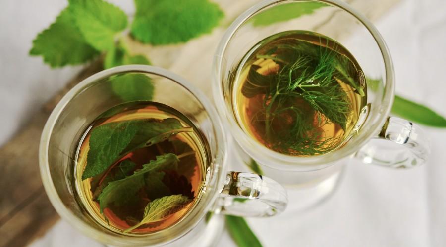 thé-vert--aliments-brûle-graisse-bodysculptor